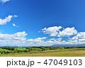 青空 夏 畑の写真 47049103
