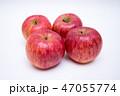 りんご リンゴ 林檎の写真 47055774