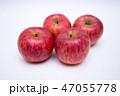 りんご リンゴ 林檎の写真 47055778