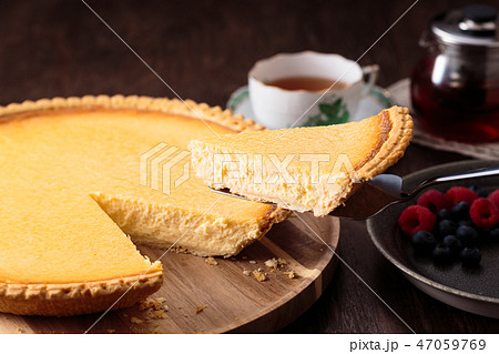 チーズケーキタルト 47059769