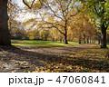 グリーンパーク ロンドン 紅葉 47060841