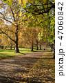 グリーンパーク ロンドン 紅葉 47060842