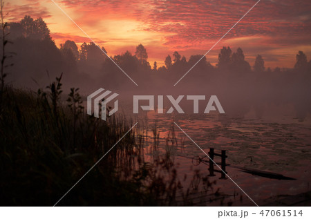 Beautiful orange pink sky over peaceful lake. Foggy autumn sunrise. Trees silhouette, lonely dock 47061514
