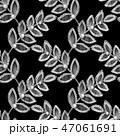 47061691