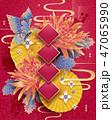 菊科 キク 菊のイラスト 47065990