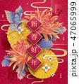 菊科 キク 菊のイラスト 47065999