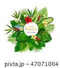 トロピカル 熱帯 ヤシのイラスト 47071004