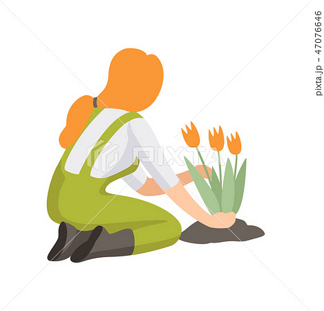 Girl planting tulip flowers, people working in the garden vector Illustration 47076646