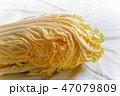 オレンジ白菜 47079809