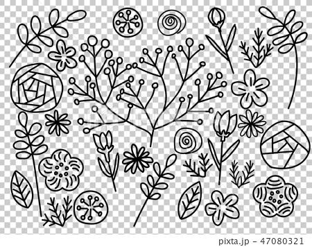 モノクロ植物・線画セット 47080321