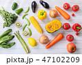 野菜 緑黄色野菜 食事の写真 47102209