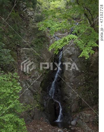 神奈川県 大山の二重滝 47102728