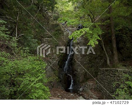 神奈川県 大山の二重滝 47102729