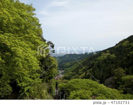 神奈川県 大山の新緑 47102731