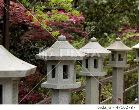 神奈川県 大山寺 47102737