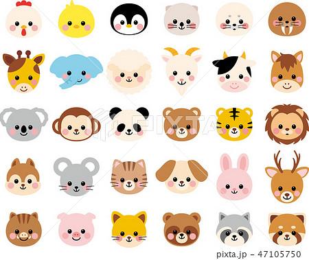 動物 アイコン セット 47105750
