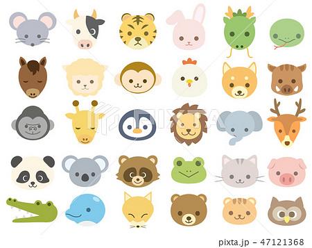 動物のアイコン1 47121368