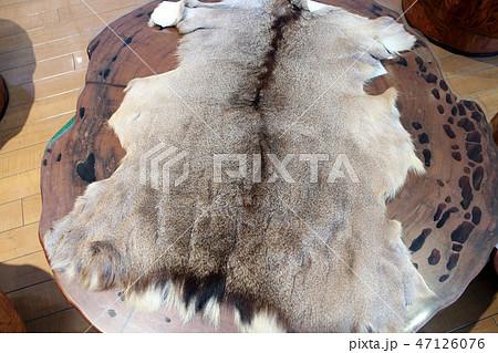鹿毛皮 47126076