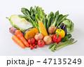 【切抜パス付】野菜 47135249