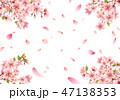 桜 花 フレームのイラスト 47138353