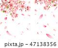 桜 花 春のイラスト 47138356