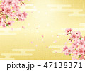 和柄 桜 花のイラスト 47138371