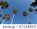 青空 空 晴天の写真 47138843