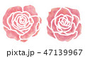 植物 バラ 薔薇のイラスト 47139967