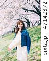 女性 桜 花見の写真 47142372