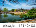 香遠亭 景福宮 春の写真 47142488