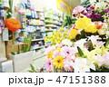 スーパーマーケット 47151388