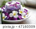 花 ビオラ アレンジメントの写真 47160309