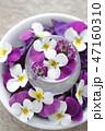 花 ビオラ フラワーアレンジメントの写真 47160310