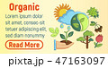有機 コンセプト 概念のイラスト 47163097