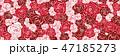 花 模様 植物のイラスト 47185273