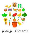 ベジタブル 野菜 献立のイラスト 47203252