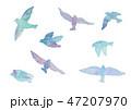 水彩画 鳥 羽ばたくのイラスト 47207970