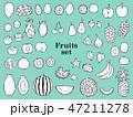 果物 フルーツ ベクターのイラスト 47211278