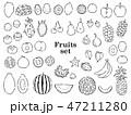 果物 フルーツ ベクターのイラスト 47211280