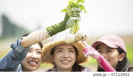 女性 農業 仲間 47212602
