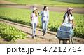 女性 農業 仲間 47212764