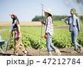 女性 農業 仲間 47212784