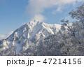 三鈷峰 大山 風景の写真 47214156