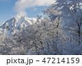 三鈷峰 大山 風景の写真 47214159