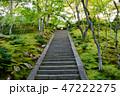 常寂光寺 寺社仏閣 和の写真 47222275