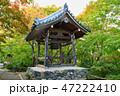 常寂光寺 寺院 鐘楼の写真 47222410