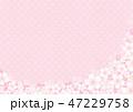 桜 春 花のイラスト 47229758