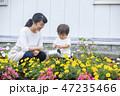 ガーデニング 花壇 親子の写真 47235466