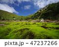 神津島の絶景 47237266