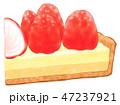 ケーキ スイーツ 洋菓子のイラスト 47237921